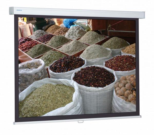Leinwand ProScreen 213x280 weiß